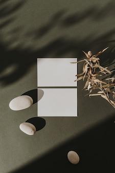 Blanco vel papier kaarten met lege kopie ruimte, droge bloemtak, stenen en zonlicht schaduwen op donkergroen