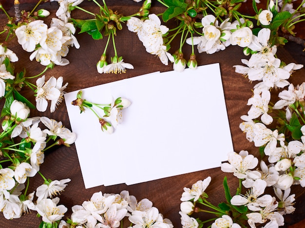 Blanco vellen papier onder bloeiende kersen takken