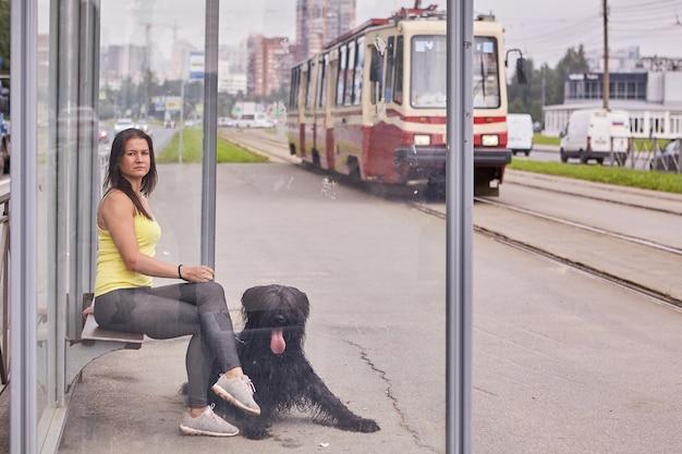 Blank meisje en haar zwarte briard zitten op de halte van het openbaar vervoer met de tram