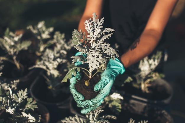 Blanke vrouw herplant bloemen tijdens het werken in de achtertuin met handschoenen