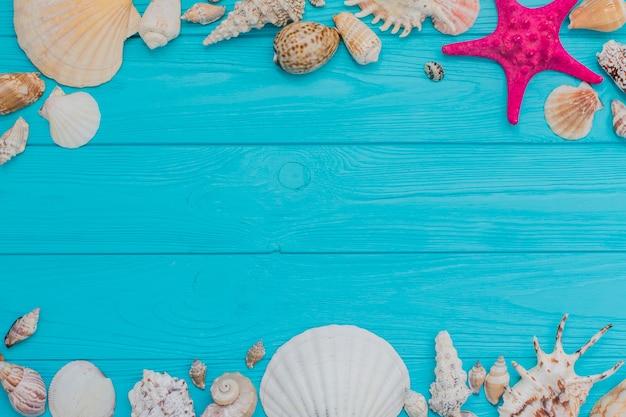 Blauw houten oppervlak met zeeschelpen en lege ruimte voor berichten