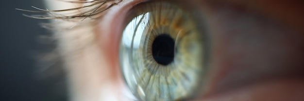 Blauw oog met wimpers close-up. het zicht verbeteren met lasercorrectie.