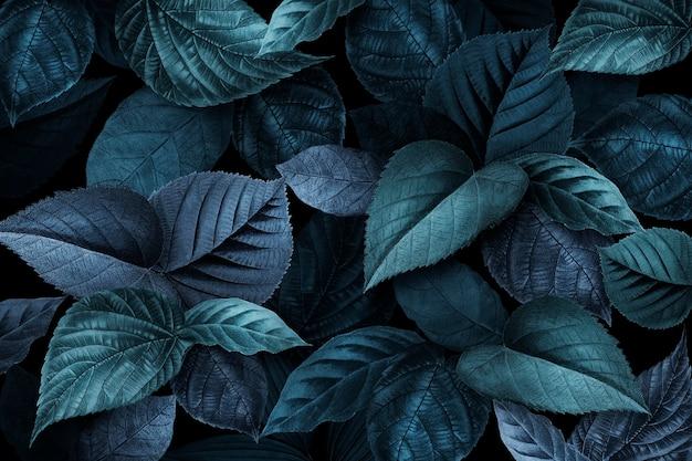 Blauwachtige plantenbladeren getextureerde achtergrond Gratis Foto