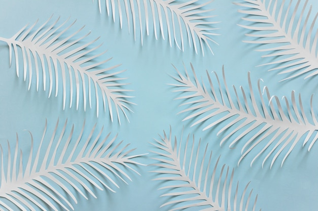 Blauwe achtergrond met stekelige witboekveren