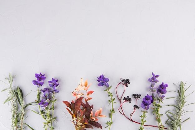 Blauwe bloemen met plant takken op tafel