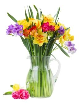 Blauwe en gele fresia en gele narcisbloemen in glasvaas die op witte achtergrond wordt geïsoleerd