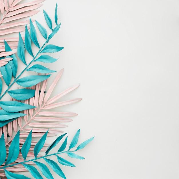 Blauwe en roze bladeren die op witte achtergrond met copyspace worden geverft