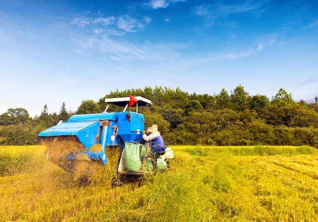 Blauwe harvester werken
