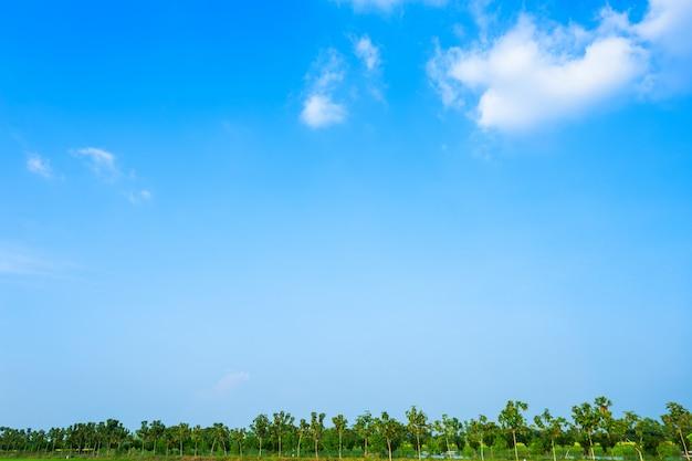 Blauwe hemel achtergrondtextuur met witte wolken.