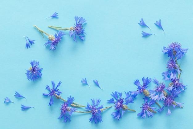 Blauwe korenbloemen op blauw papier