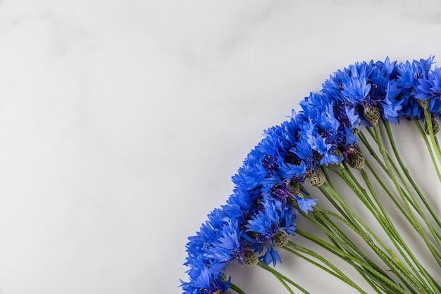 Blauwe korenbloemen op wit marmeren oppervlak