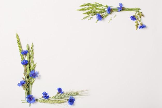 Blauwe korenbloemen op wit oppervlak