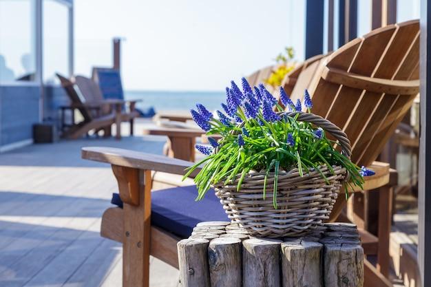 Blauwe lavendel in een oude vaas in een café