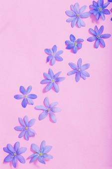 Blauwe lentebloemen op roze achtergrond