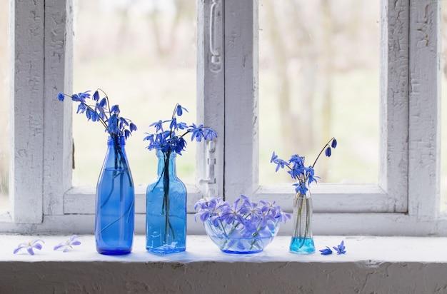 Blauwe lentebloemen op vensterbank