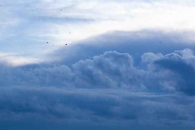 Blauwe lucht met kleine wolken en vogels in de verte