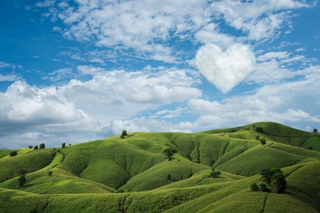 Blauwe lucht met witte wolken en een hart op groen veld