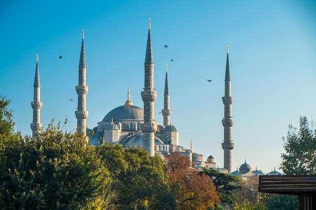 Blauwe moskee van istanbul