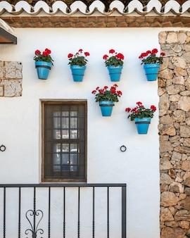 Blauwe potten, rode geraniums