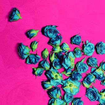 Blauwe rozen op een karmozijnrode achtergrond. zuur ontwerp. kunst. minimalisme.