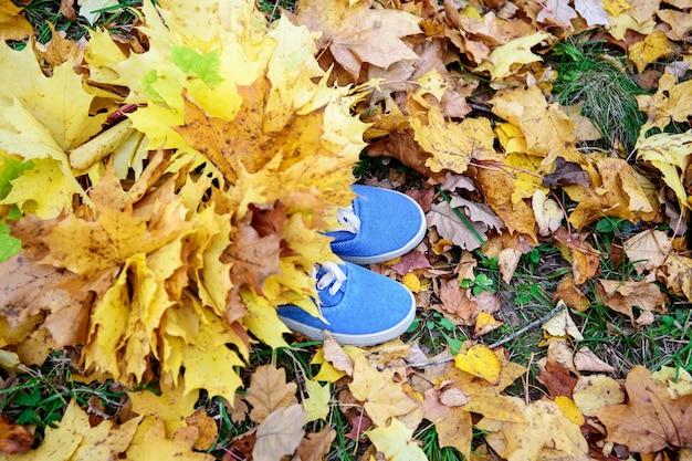 Blauwe sneakers met gele herfstbladeren. het concept van wandelen.