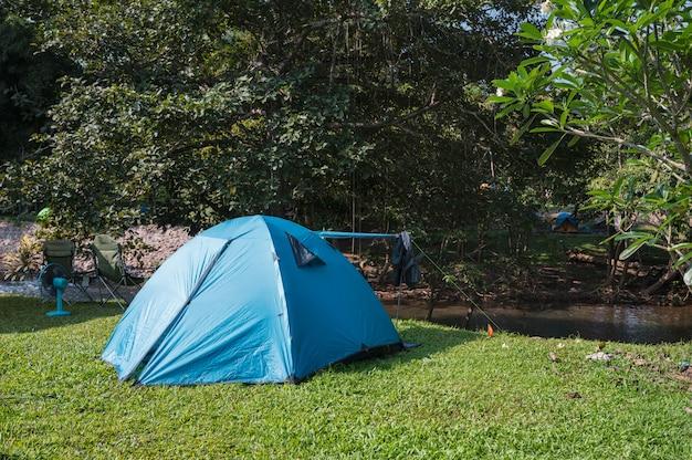 Blauwe tent die op gazon in tropisch regenwoud kampeert