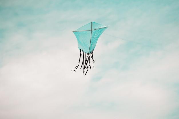 Blauwe vlieger met zwarte staart tijdens de vlucht