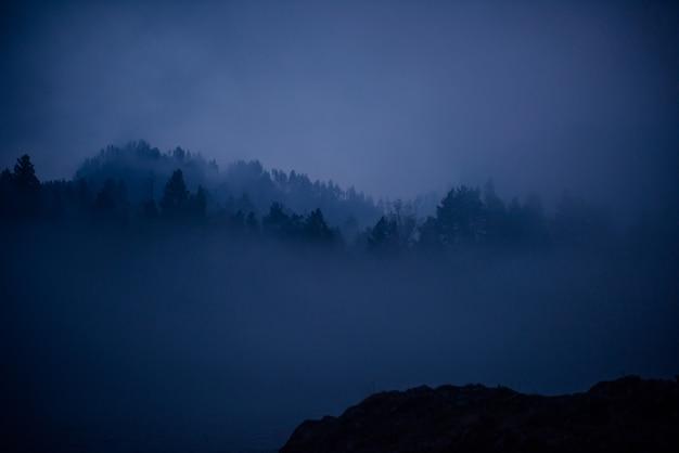 Blauwe waas, mystieke mistige ochtend. fantastisch landschap, dikke mist over bergrivier in de schemering