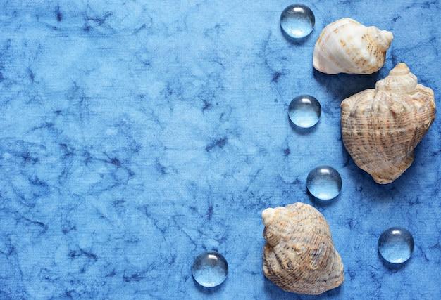 Blauwe zee plat lag met schelpen