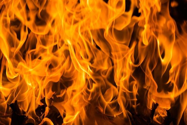 Blaze fire flame background and textured, closeup bosbrand