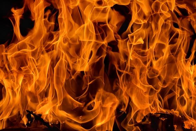 Blaze vlam achtergrond en textuur Premium Foto