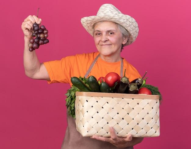 Blij bejaarde vrouwelijke tuinman tuinieren hoed bedrijf plantaardige mand en tros druiven op roze te dragen