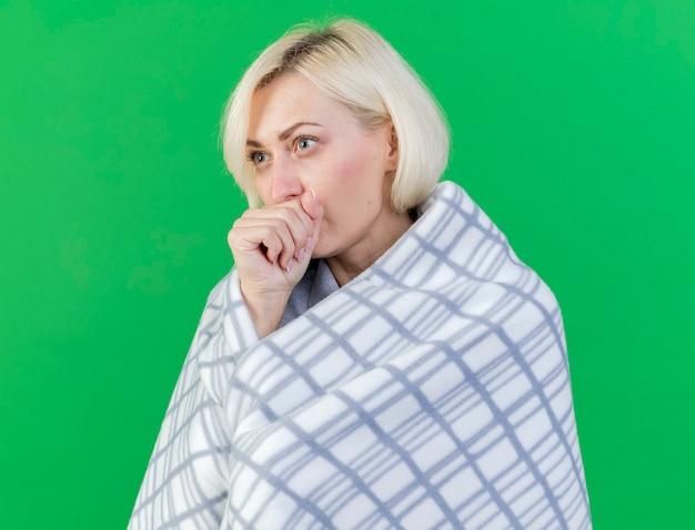 Blij jonge blonde zieke vrouw gewikkeld in plaid houdt vuist dicht bij mond geïsoleerd op groene muur