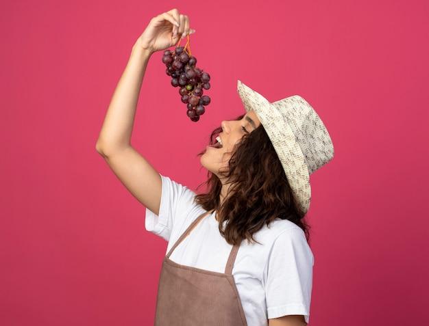 Blij jonge vrouwelijke tuinman in uniform dragen tuinieren hoed druiven proberen