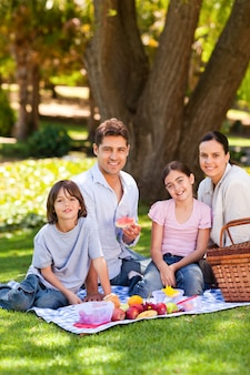 Blije familie die in het park picknicken