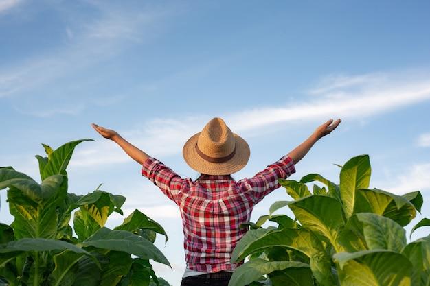 Blije jonge vrouw in een tabaksaanplanting.