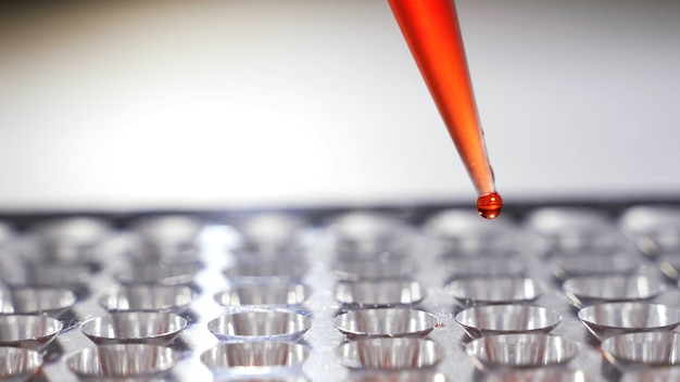 Bloedmonsters laten druppelen in reageerbuisjes close-up