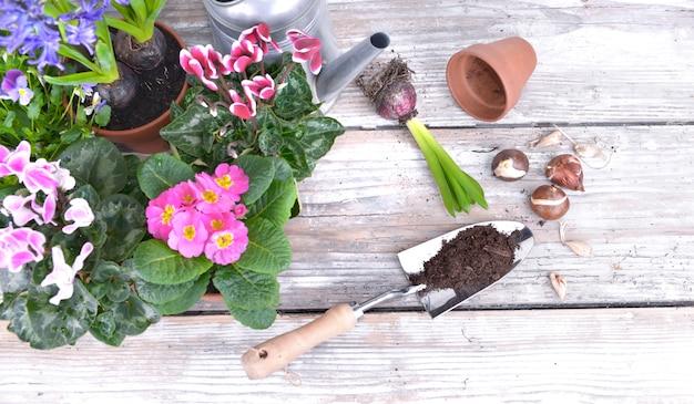 Bloeiende bloemen met tuingereedschap