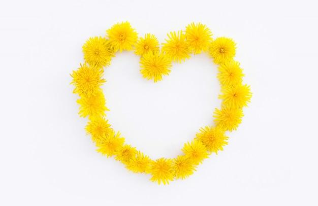 Bloeiende gele paardebloembloemen in de vorm van een hart.