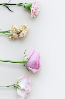 Bloeiende kleurrijke bloemen achtergrondontwerp