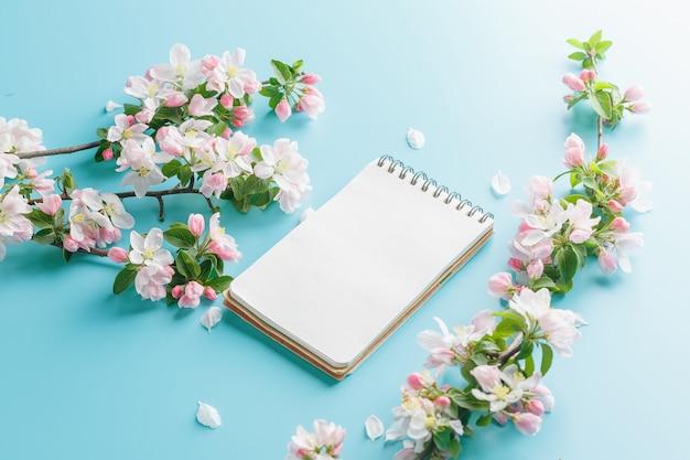 Bloeiende lente sakura op een blauw