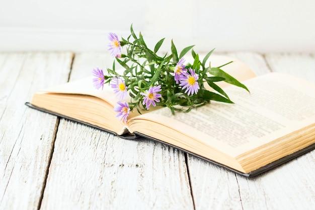 Bloeiende maagdelijke astersbloemen op open boek op venster.