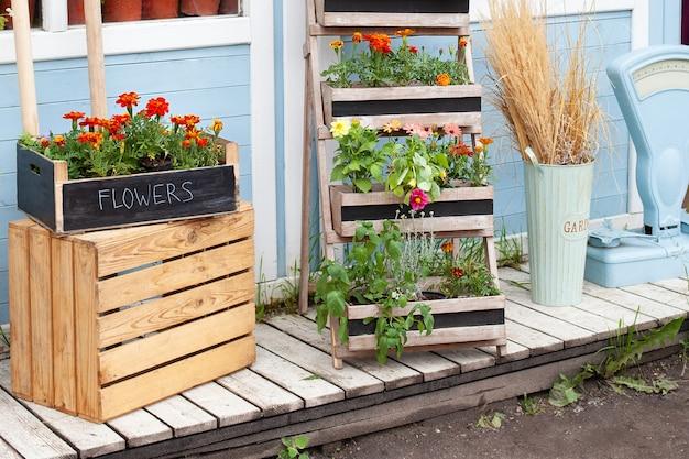 Bloeiende oranje tagetes bloemen in pot op veranda zomerdecor veranda huis zomerterras interieur