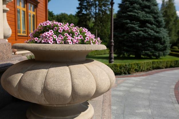 Bloeiende roze zomerbloemen in een pot in de buurt van het moderne houten huis. ruimte voor tekst