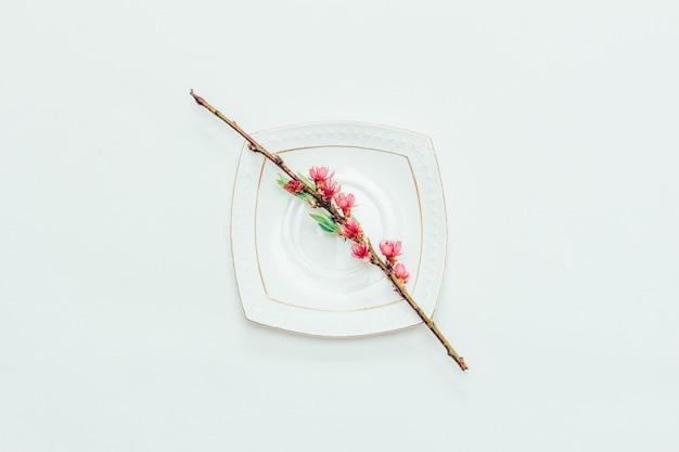 Bloeiende tak van een perzik met roze bloemen op een witte schotel op een witte dichte omhooggaande, hoogste mening