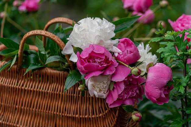 Bloeiende takken met bloemen en pioenknoppen met waterdruppels in een natte tuin na regen
