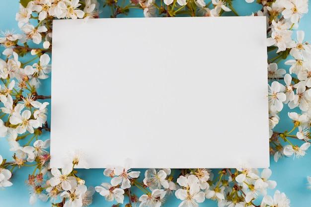 Bloeiende takken op een pastel achtergrond.