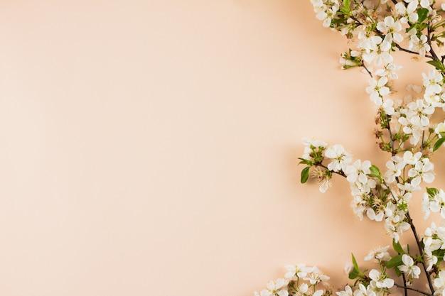 Bloeiende takken op een pastel achtergrond