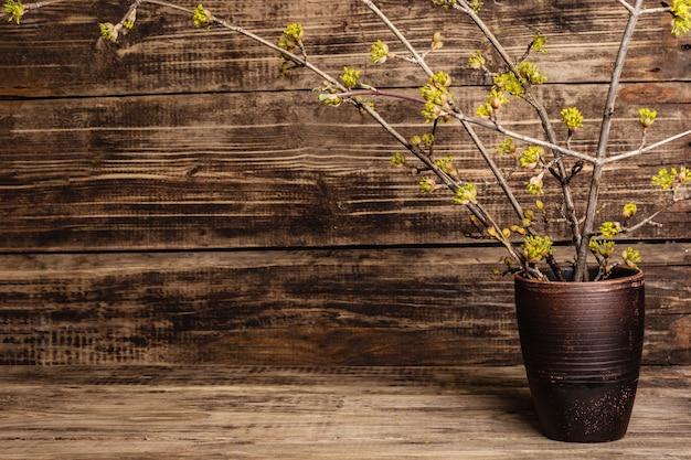 Bloeiende twijgen van kornoelje in een keramische vaas op een vintage houten planken