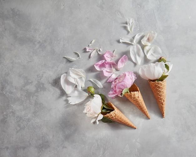 Bloeiende witte en roze pions met toppen, groen blad, bloemblad in een wafeltje kegels op een grijze achtergrond, plaats voor tekst. bovenaanzicht, zomerconcept van felicitaties voor verjaardag.